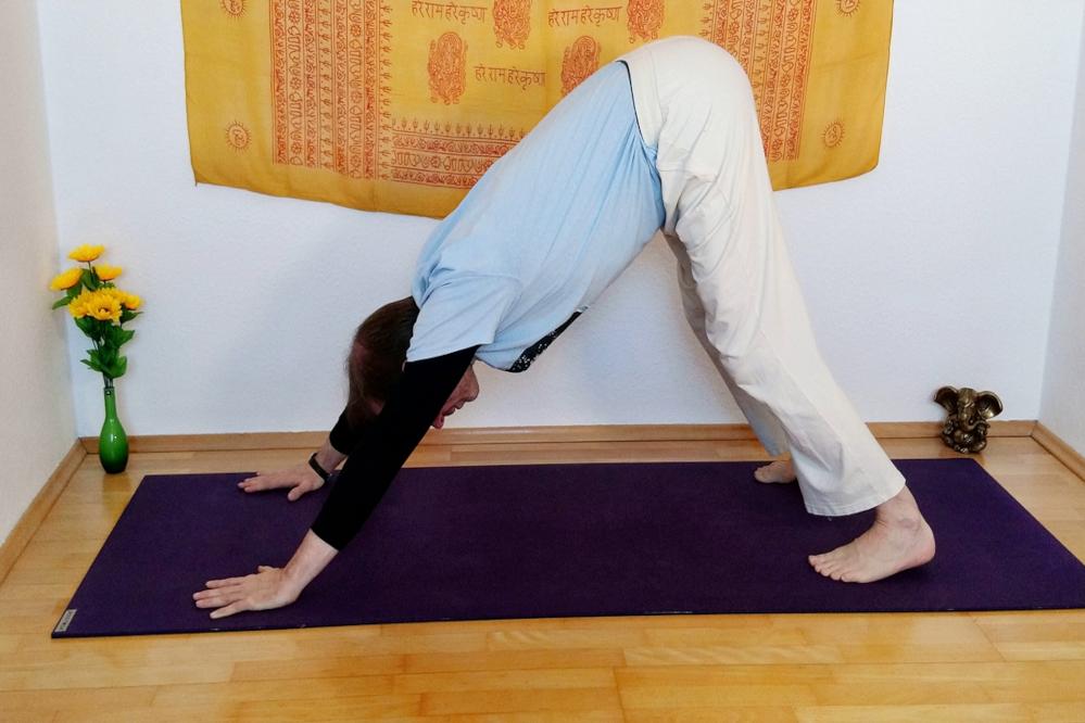 Hatha Yoga - in der Übersicht - Asana - Hund